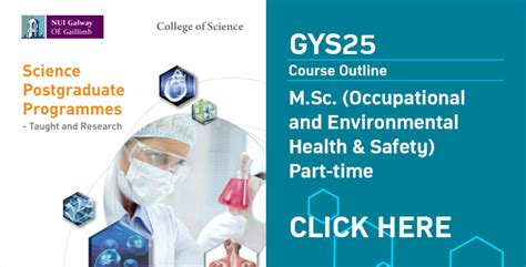 Occupational And Environmental Health & Safety (mschdip
