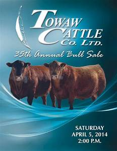 Towaw Cattle Co. Ltd. 35th Annual Bull Sale Catalog by ...
