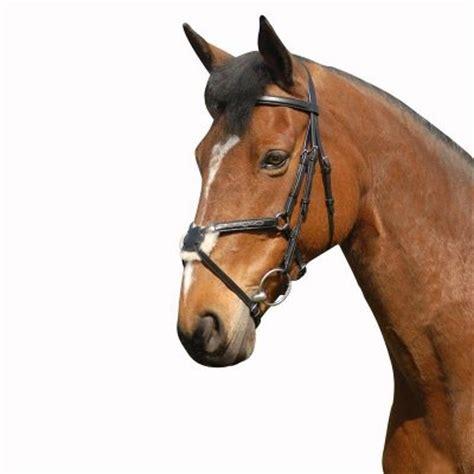 de avendre equitation de avendre equitation skyrock