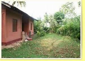 Sri Lanka Immobilien : immobilien kleinanzeigen in scharnebeck ~ Markanthonyermac.com Haus und Dekorationen