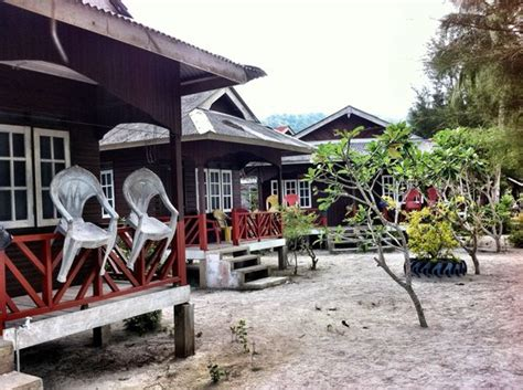 fauna chalet pulau perhentian besar malaysia