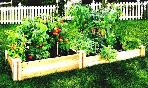 Easy Patio Vegetable Garden  Garden Design Ideas