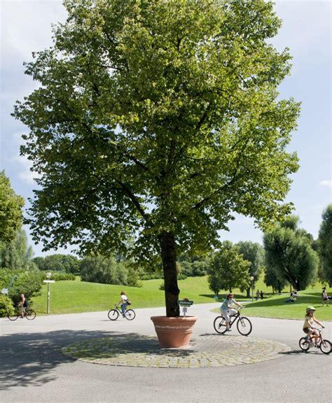 grand arbre paperplane