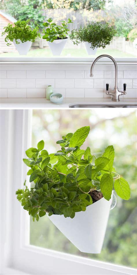 17 best ideas about indoor window garden on