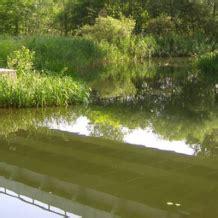 r 233 cup 233 rer filtrer les eaux de pluie mode d emploi terre et jardin