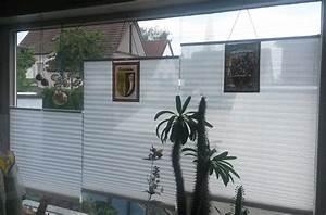 Plissee Für Große Fenster : kundenbild sichtschutz am wohnzimmer fenster mit 3 plissees nebeneinander schlafzimmer ~ Markanthonyermac.com Haus und Dekorationen