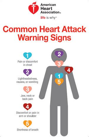 Warning Signs Of A Heart Attack. Electronics Signs Of Stroke. Positive Signs Of Stroke. Safety Osha Signs Of Stroke. Treatment Signs Of Stroke. Baby Recovery Signs. Thrombolysis Signs Of Stroke. Marvel Heroes Signs. Testicular Cancer Signs
