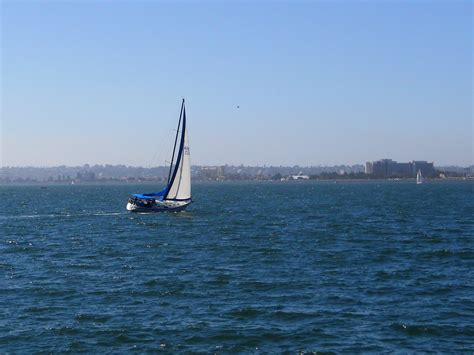 Whale Watching Boat Tours San Diego Ca by San Diego Whale Watching Tours San Diego Beach Secrets
