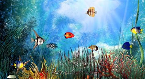 screensaver aquarium gratuit 224 t 233 l 233 charger