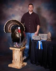 Showpiece Taxidermy: South Dakota's National Award-Winning ...