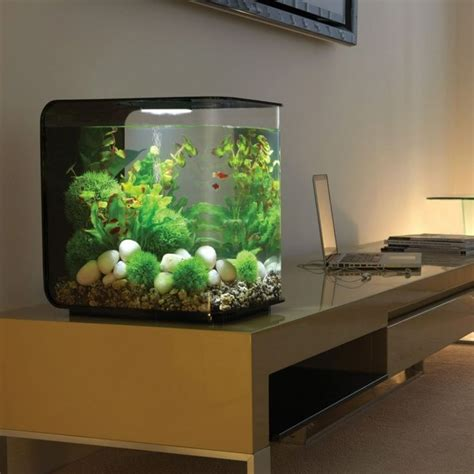 les 25 meilleures id 233 es de la cat 233 gorie aquarium design sur aquascape planted