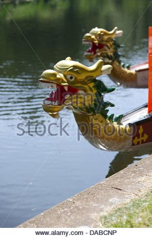 Dragon Boat Racing Warwick by Dragon Boat Racing River Avon Warwick Uk Stock Photo