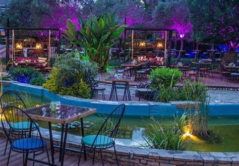 Garden Day & Night, Nicosia
