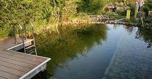 Badeteich Im Garten : schwimmteich anlegen mein sch ner garten ~ Markanthonyermac.com Haus und Dekorationen