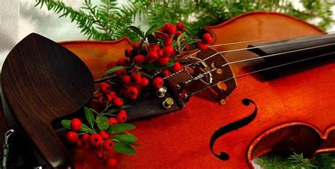 Lunch Time Christmas Recital By Violin Trio