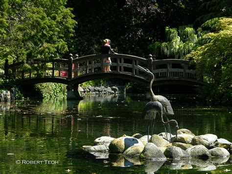 asian garden cary nc how to build a japanese garden japanese garden waterfall