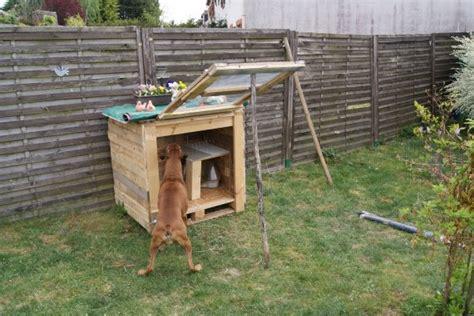 231 a y est la cage est fini hamsters cochons d inde lapins forum animaux