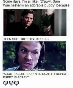 25+ Best Memes About Adorable Puppy   Adorable Puppy Memes