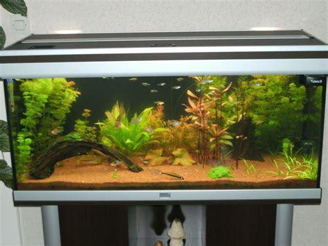 aquarium aquatlantis ambiance 101 par gummi