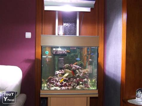 aquarium eau de mer 140 l complet namur 5000
