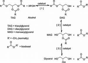 Transesterification of TAG to yield fatty acid alkyl ...