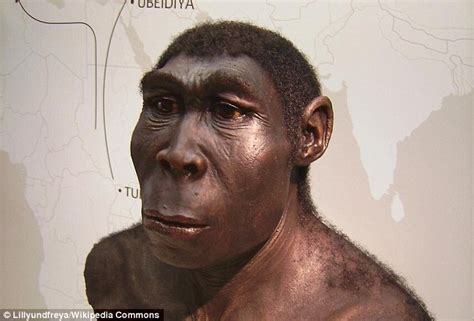 Our Ancestors May Have Been Scavengers, Study Reveals