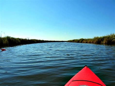 Boat Rental Duck Nc by The Top 10 Things To Do Near Outer Banks Boat Tours Duck