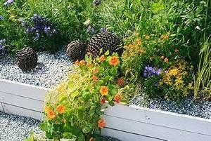 Kiesbeet Anlegen Bilder : blumenbeet mit kies anlegen pflanzen pflegen ~ Markanthonyermac.com Haus und Dekorationen