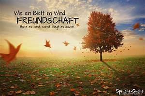 Bild Mit Spruch : freundschaft spruch zum nachdenken blatt im wind spr che suche ~ Markanthonyermac.com Haus und Dekorationen