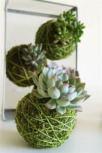 kokedama :: japanese tradition :: lovely and cute ...