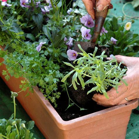 faire une jardini 232 re jardinage