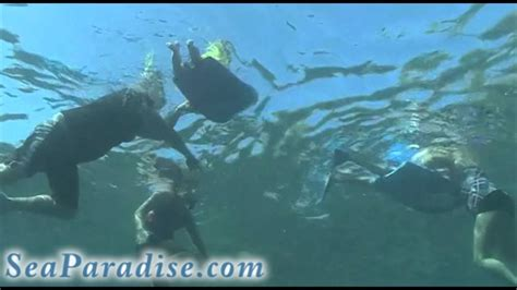 Catamaran Snorkeling Kona Hawaii by Sea Paradise Snorkel Tours In Kona Hawaii Youtube