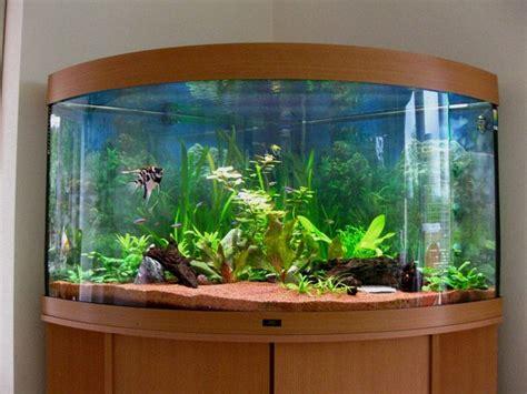 aquariums to decorate house interior design decor