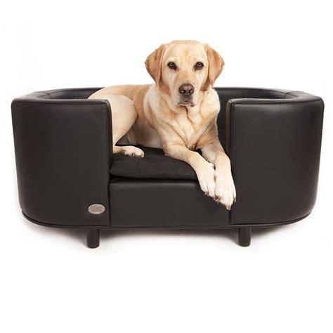 canap 233 pour chien canap 233 s et sofas pour chien oh pacha