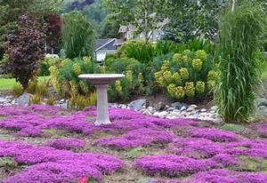 Alternative Zu Gras Garten : 10 bodendecker pflanzen als alternative zur rasenfl che ~ Markanthonyermac.com Haus und Dekorationen
