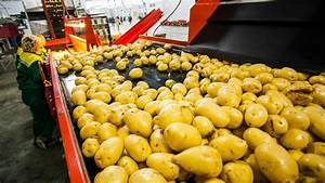 CRAZY FOOD PROCESSING MACHINES 2018 | POTATO - YouTube