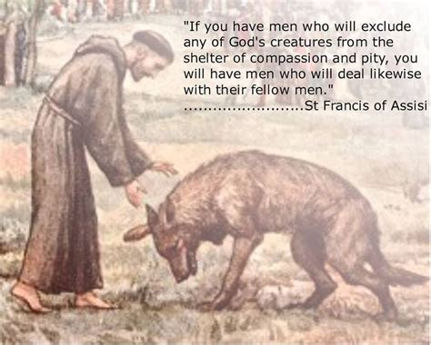 st francis of assisi pets and animals