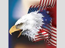 Bald eagle with flag design Vector Image 1552956