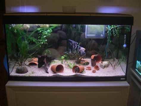aquarium 200 litres de zitoum