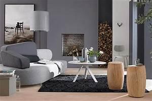 Graue Wandfarbe Mischen : mut zur wandfarbe grau bild 17 living at home ~ Markanthonyermac.com Haus und Dekorationen