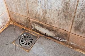 Hausmittel Gegen Schimmel In Der Dusche : brennspiritus gegen schimmel in der wohnung frag mutti ~ Markanthonyermac.com Haus und Dekorationen