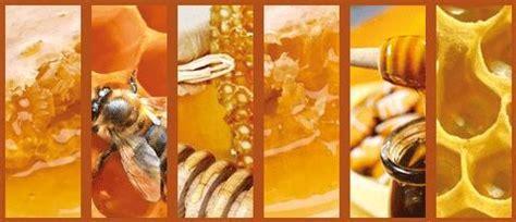 conditionnement miel emballage alimentaire verre pot en verre miel