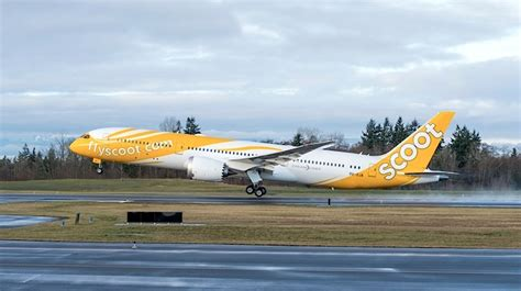 KrisFlyer adds Scoot and Tigerair Singapore as airline partners | Australian Aviation