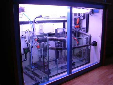 l aquarium de cedric dit maccoy