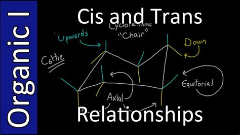 cis and trans substituent relationships organic chemistry i