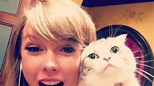 Taylor Swift's 47 Most Hilarious Photos of Her Two Cats ...
