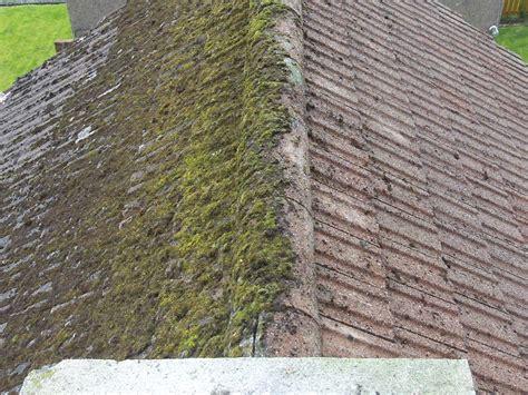 Pressure Washing In Bellingham, Wa Abc Roofing Denver Roof Truss Cost Calculator Asphalt Vs Metal Mcallen Valley Best Paint Rack For Car Macarthur Supply Spray On