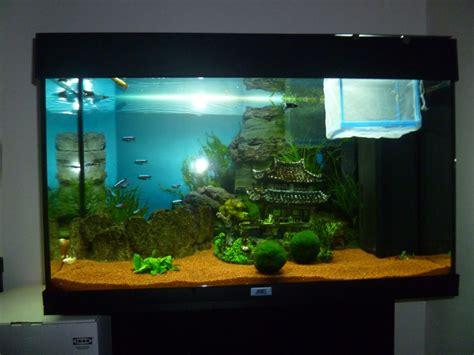 mon aquarium 120 litres