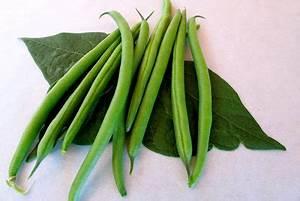 Gemüse Haltbar Machen : bohnen einmachen so machen sie das gem se haltbar ~ Markanthonyermac.com Haus und Dekorationen