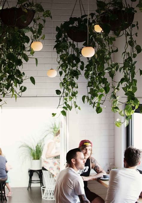 25 Indoor Garden Ideas  Your No1 Source Of Architecture. Cream Dining Chairs. Industrial Bookcase. Wooden Gate Designs. Farm Style Doors. Live Edge Wood Coffee Table. Franklin Iron Works Lighting Company. Blue Ceramic Table Lamp. Beautiful Ceiling Fans